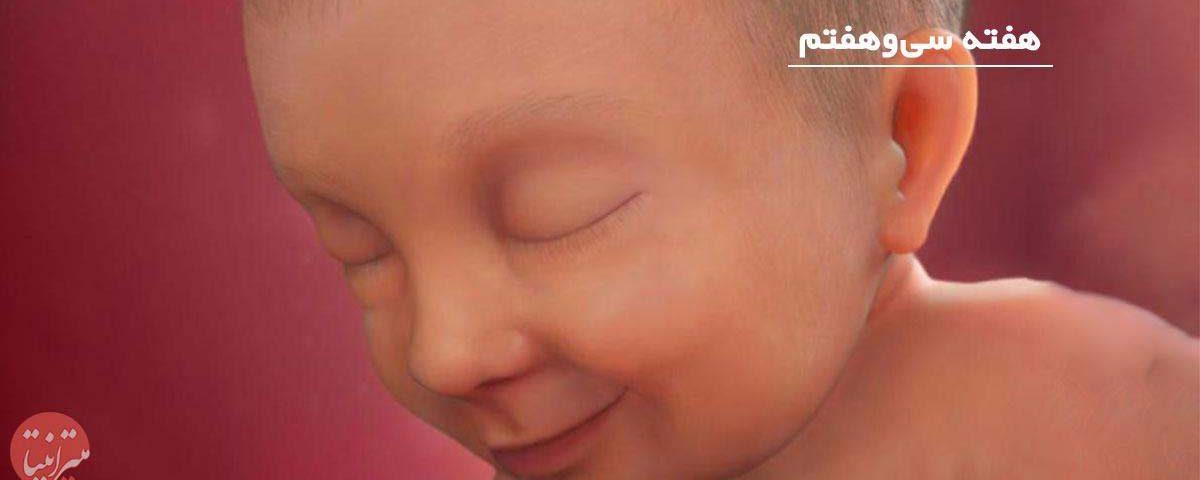بارداری: هفته سی و هفتم - میترانیتا