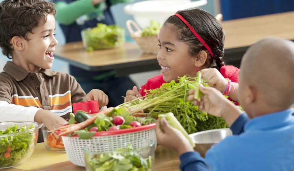 غذاهای سالم برای خردسالان - میترانیتا